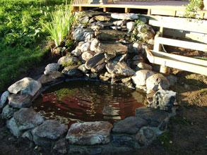 Hvordan lage dam i hagen